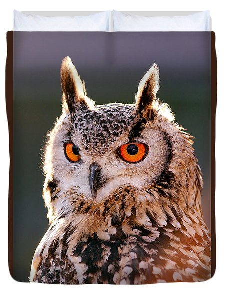Backlit Eagle Owl Duvet Cover by Roeselien Raimond