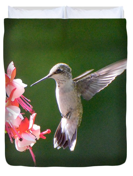 Backlit Fuchsia And Hummer Duvet Cover by Amy Porter