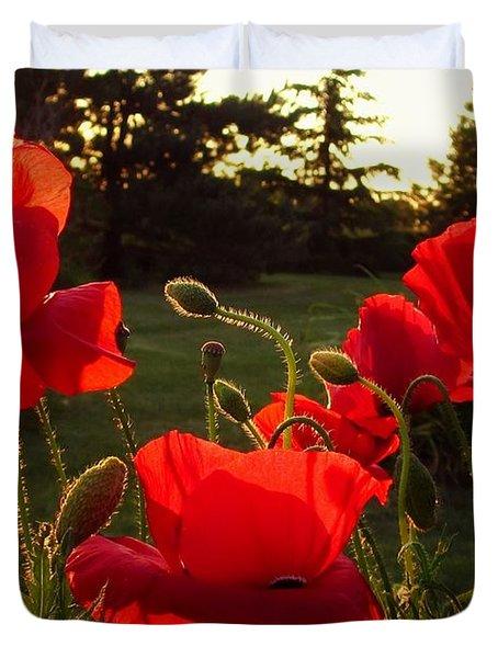 Backlit Red Poppies Duvet Cover