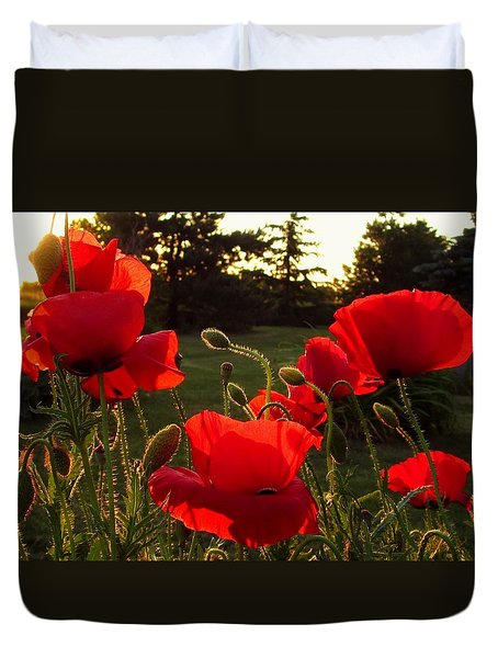 Backlit Red Poppies Duvet Cover
