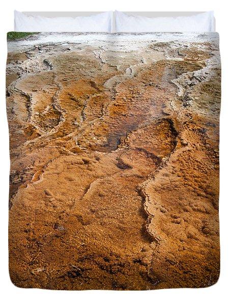 Bacterial Mat 7 Duvet Cover by Dan Hartford