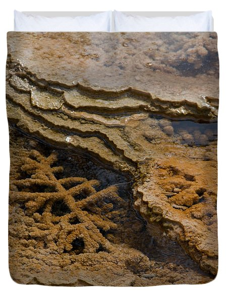 Bacterial Mat 8 Duvet Cover by Dan Hartford