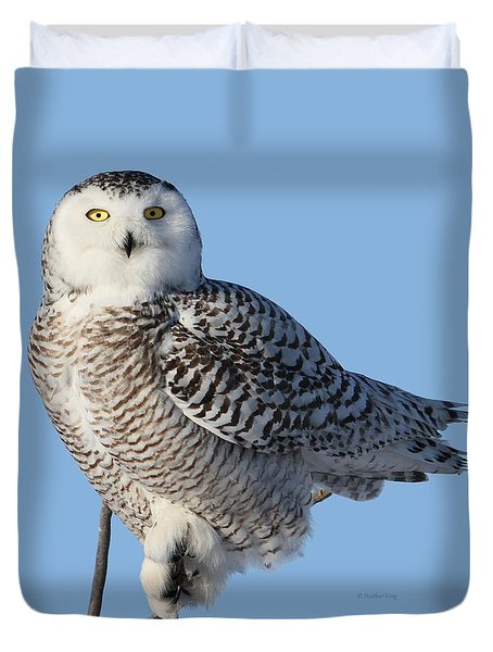 Balancing Talent Duvet Cover by Heather King