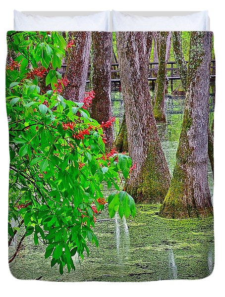 Bald Cypress And Red Buckeye Tree At Mile 122 Of Natchez Trace Parkway-mississippi Duvet Cover by Ruth Hager