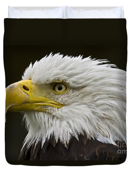 Bald Eagle - 7 Duvet Cover