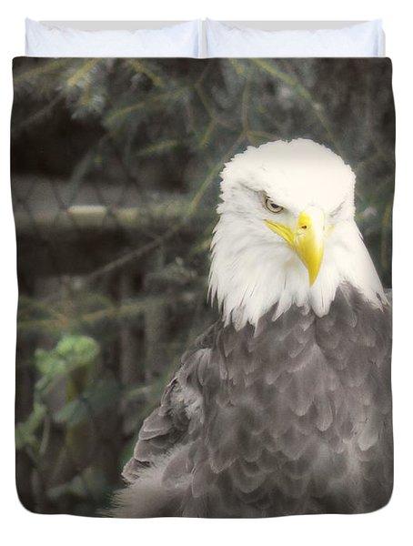 Bald Eagle Duvet Cover by Dawn Gari