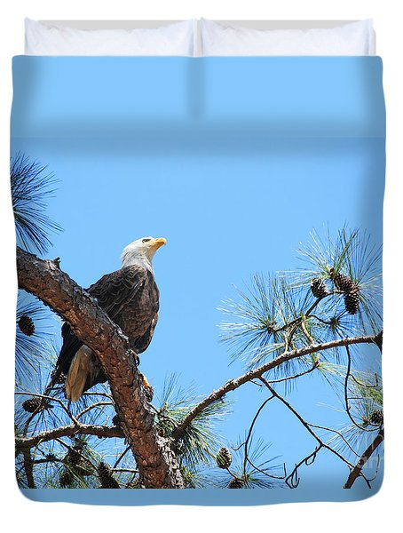 Bald Eagle Duvet Cover by Geraldine DeBoer