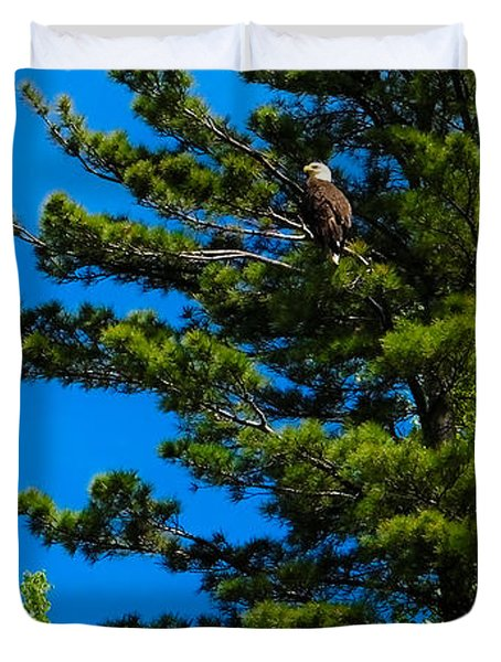 Bald Eagle   Duvet Cover by Lars Lentz
