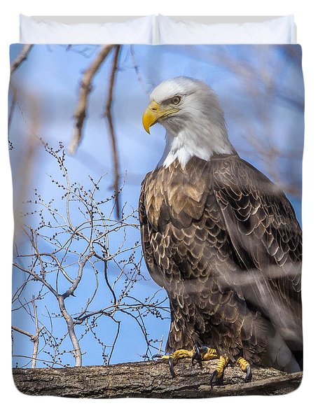 Bald Eagle On The Iowa River Duvet Cover
