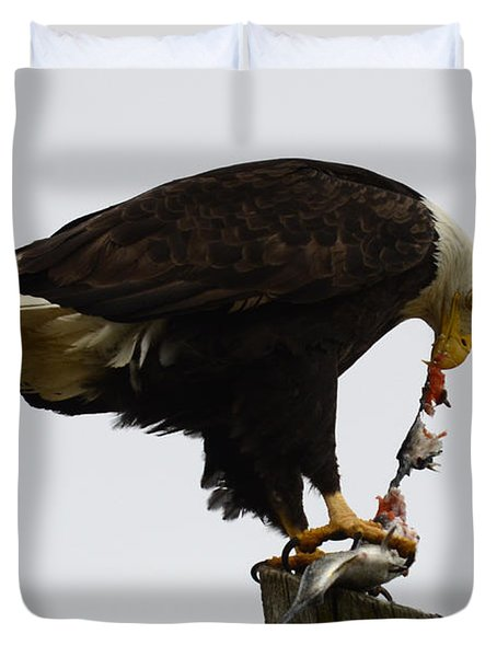 Bald Eagle Part Of Nature Duvet Cover by Bob Christopher