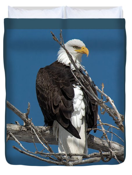 Bald Eagle Putting On The Ritz Duvet Cover