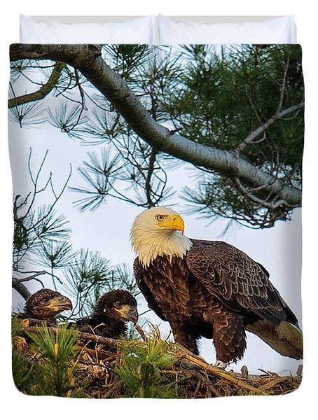 Bald Eagle With Eaglets  Duvet Cover