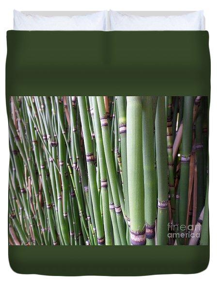 Bamboo Duvet Cover by HEVi FineArt