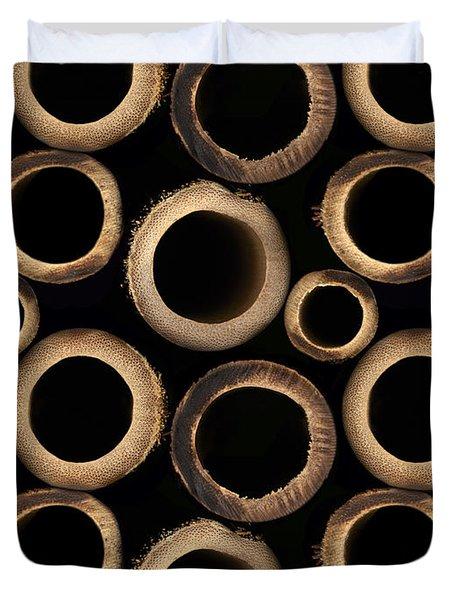 Bamboo Rings Duvet Cover by Bedros Awak