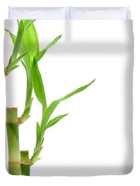 Bamboo Stems In Black Vase Duvet Cover