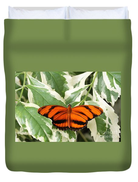 Banded Orange Longwing Butterfly Duvet Cover