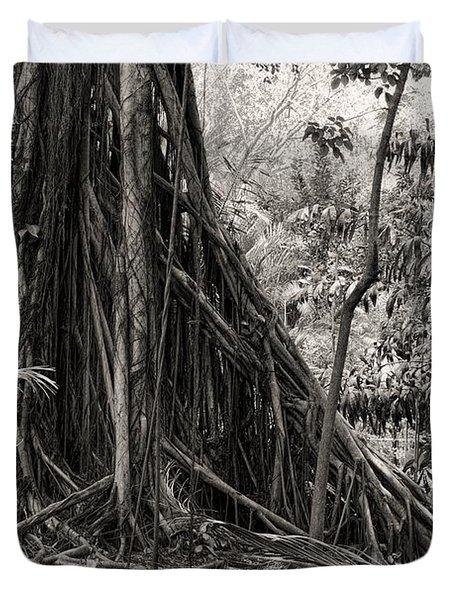 Strangler Fig And Cypress Tree Duvet Cover