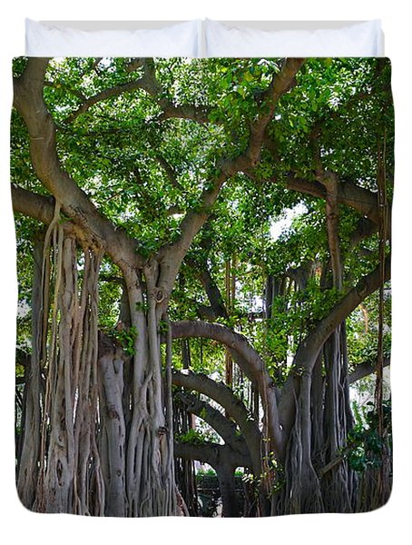 Banyan Tree At Honolulu Zoo Duvet Cover