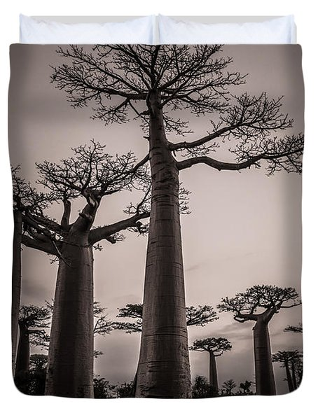 Baobab Avenue Duvet Cover