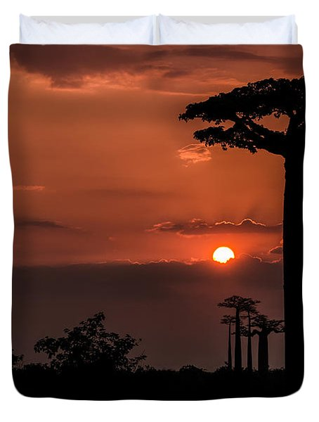 Baobab Sunrise Duvet Cover