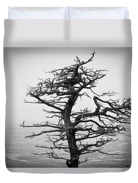 Bare Cypress Duvet Cover by Melinda Ledsome