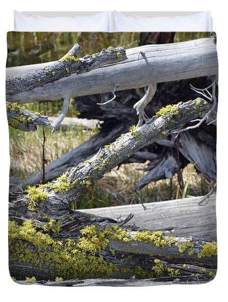 Bare Logs And Lichen In Yellowstone Duvet Cover by Bruce Gourley
