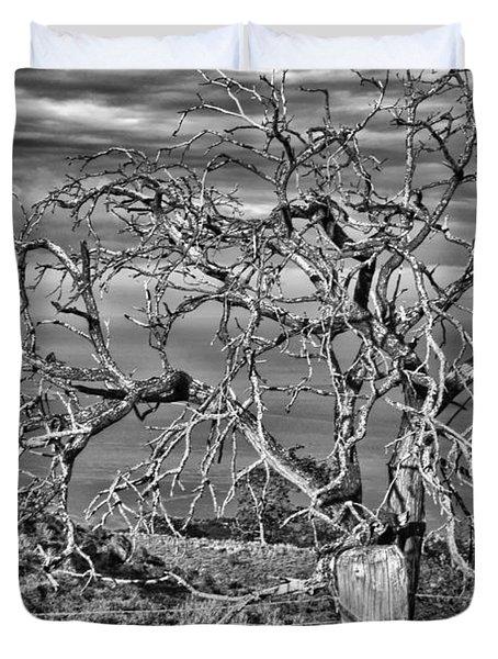 Bare Tree In Hana Duvet Cover