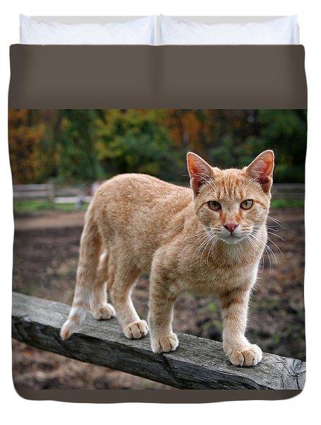 Barn Cat Duvet Cover