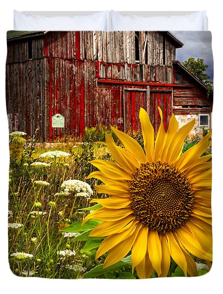 Barn Meadow Flowers Duvet Cover