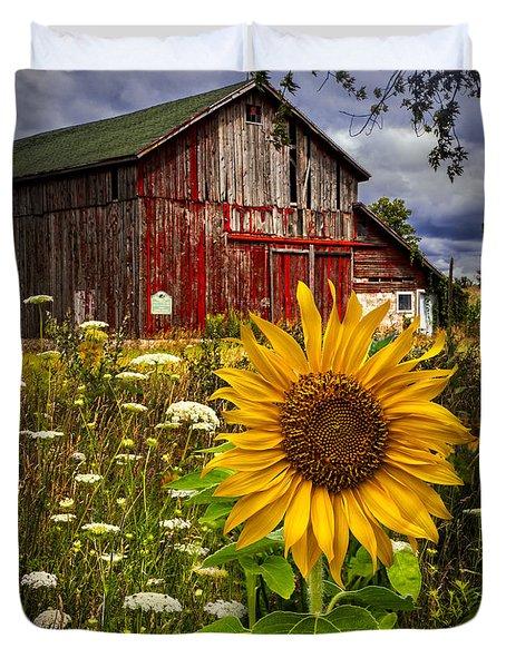 Barn Meadow Flowers Duvet Cover by Debra and Dave Vanderlaan