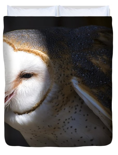 Barn Owl 1 Duvet Cover by Chris Flees