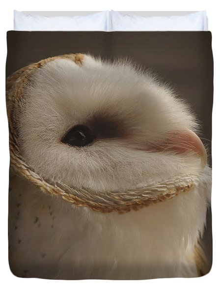 Barn Owl 4 Duvet Cover