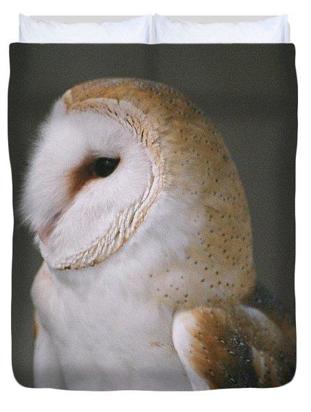 Barn Owl Duvet Cover by David Porteus