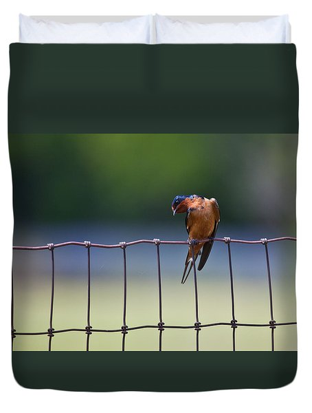Barn Swallow Duvet Cover by Mark Alder
