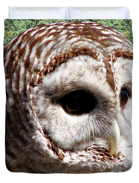 Barred Owl 2 Duvet Cover by Rose Santuci-Sofranko