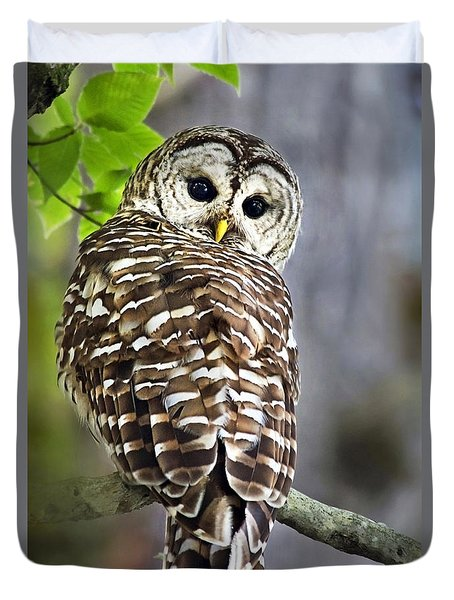 Duvet Cover featuring the photograph Barred Owl by Christina Rollo
