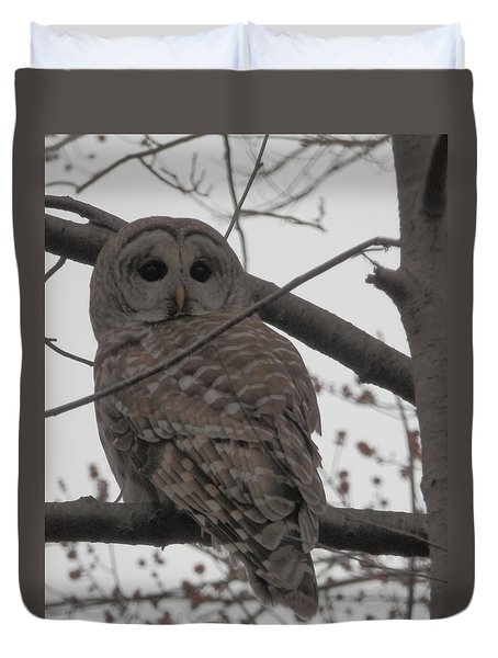 Duvet Cover featuring the photograph Barred Owl Perched by Emmy Marie Vickers