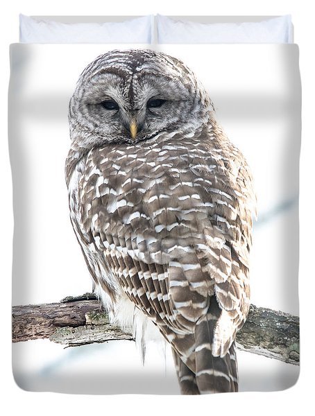 Barred Owl2 Duvet Cover