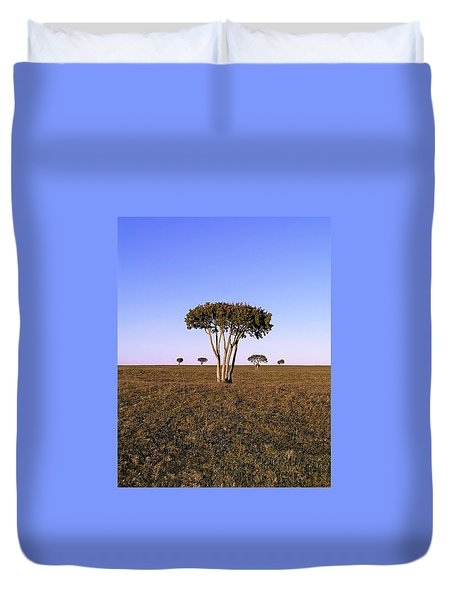Barren Tree Duvet Cover