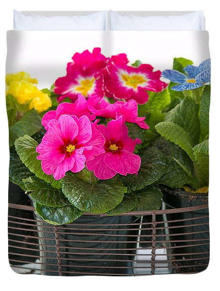 Basket Of Primroses Duvet Cover