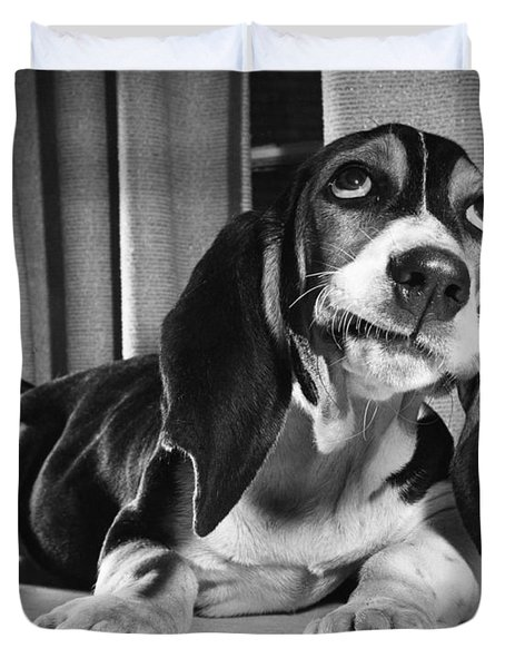 Basset Hound Puppy Duvet Cover by ME Browning