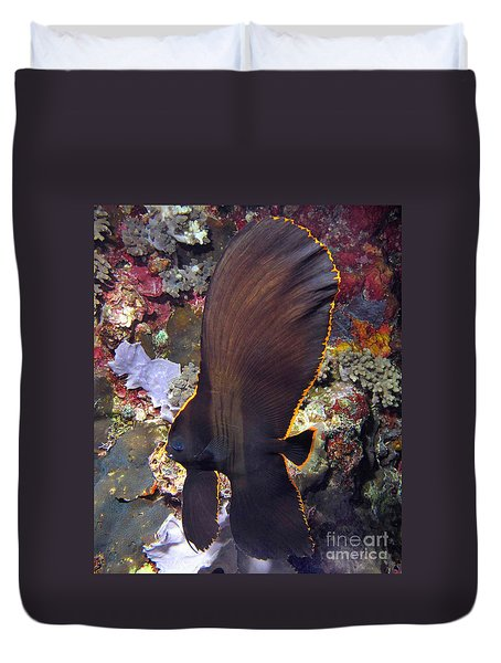 Bat Fish Duvet Cover by Sergey Lukashin