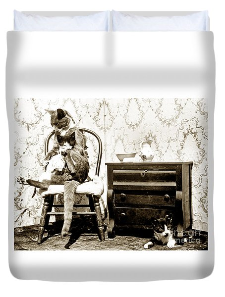 Duvet Cover featuring the photograph Bath Time For Kitty Circa 1900 Historical Photos by California Views Mr Pat Hathaway Archives