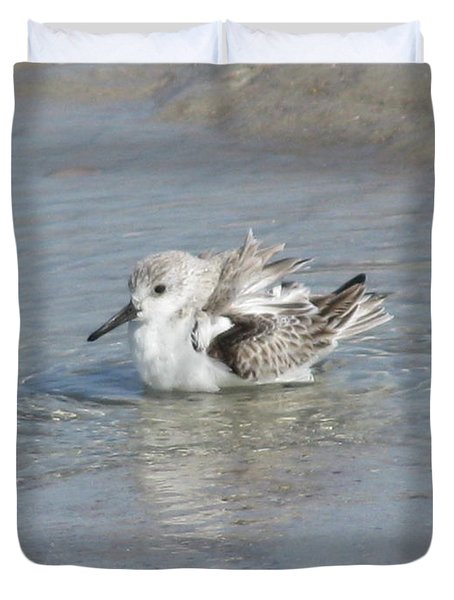 Beach Bird Bath 4 Duvet Cover by Ellen Meakin