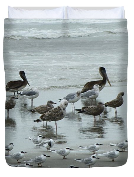 Duvet Cover featuring the photograph Beach Birds by Judith Morris