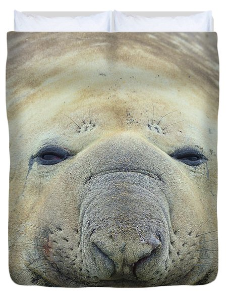 Beach Bum Duvet Cover by Tony Beck