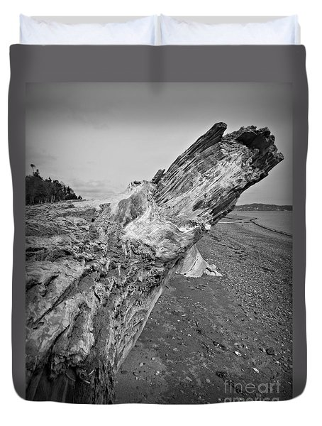 Beach Driftwood View Duvet Cover by Chalet Roome-Rigdon