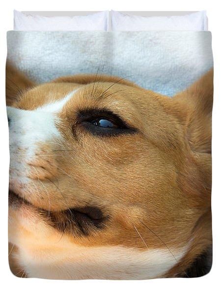 Beagles Dreams Duvet Cover