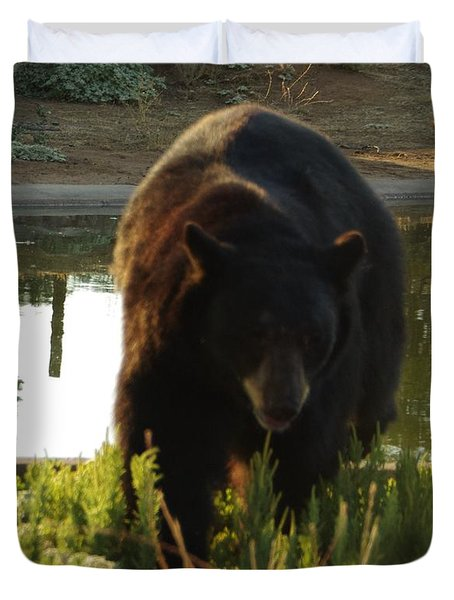 Bear 1 Duvet Cover