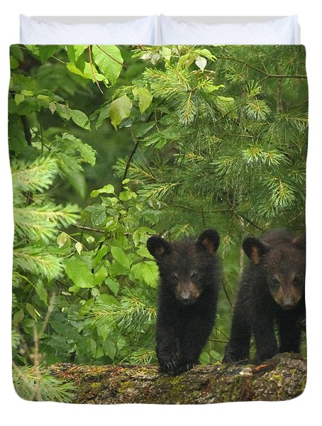 Bear Buddies Duvet Cover by Coby Cooper
